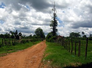 Long walk to the plantation
