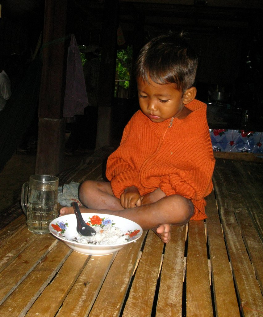 Empower 325 Cambodian Families to be Self Reliant