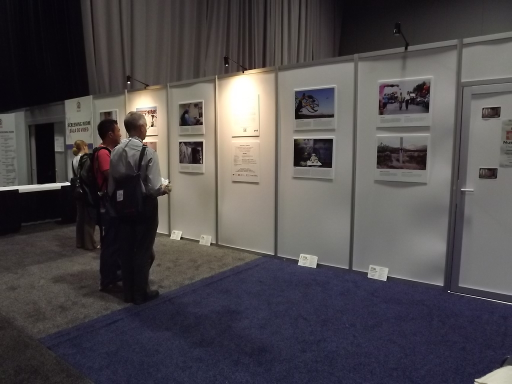 Viewing the TBPV Gallery at AIDS Con., WA DC