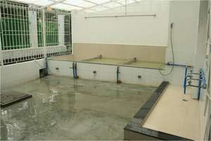 The kitchen facility