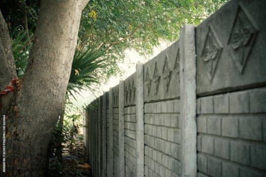 Dayspring wall