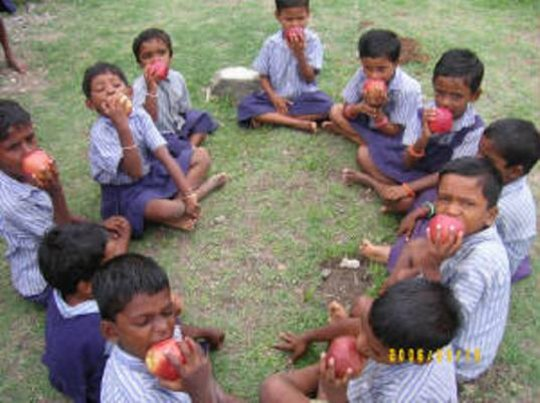 Children eat apple