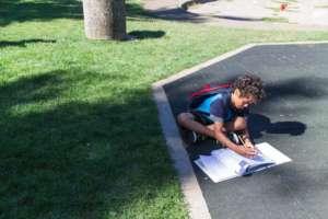 Damon Studies in Summer's Waning Sun