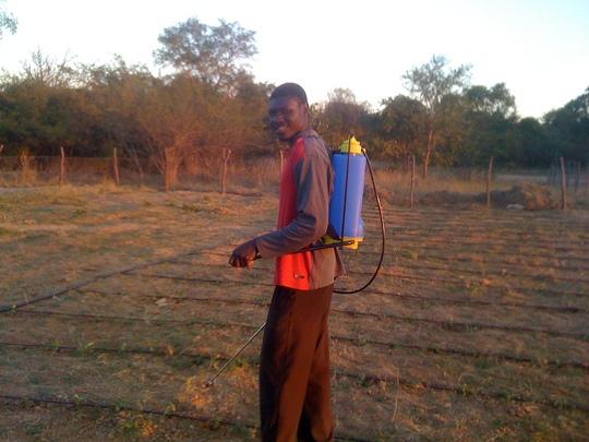 Miyanda - the local soil science graduate