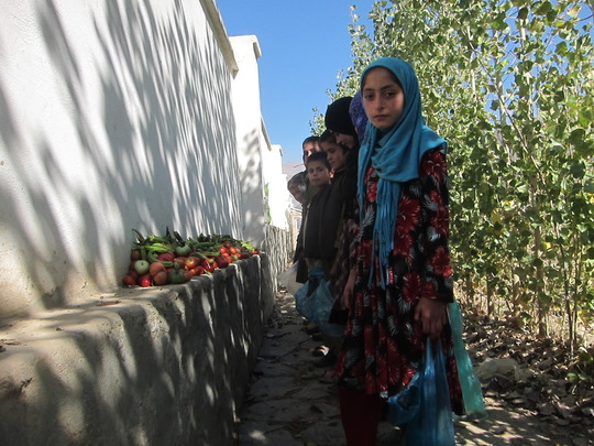A few of the Afghan girls we support