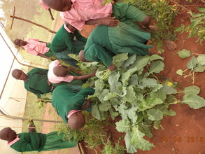 children picking their vegetables for lunch