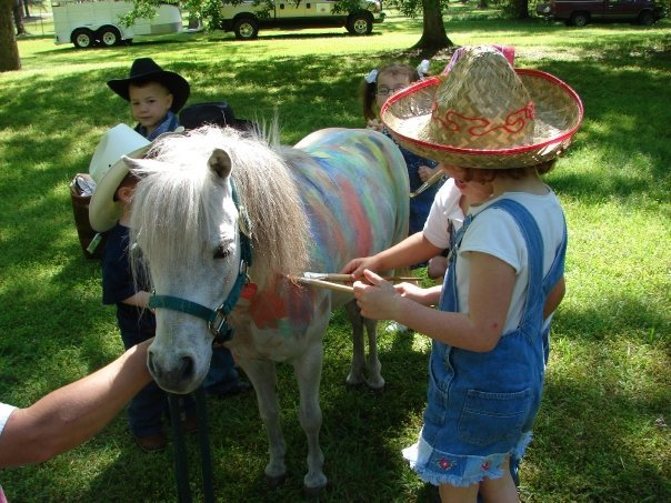 And the Painted Pony....