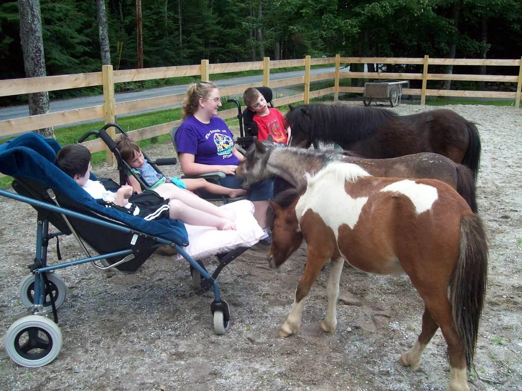 Retired ponies still being in service