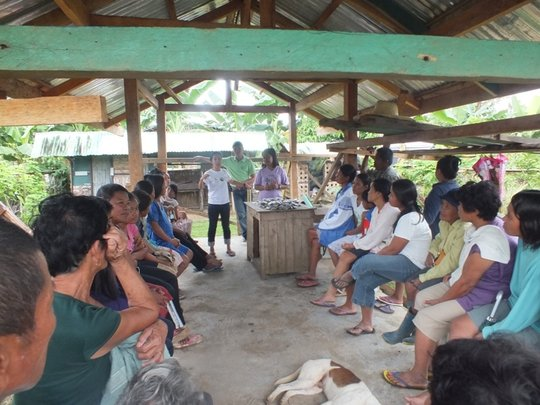 Training and distribution of vegetable seeds