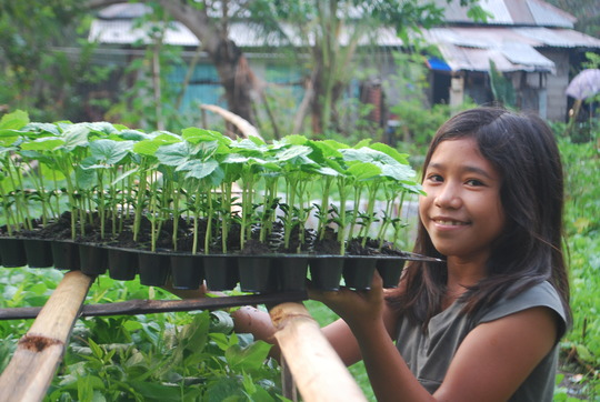 Vegetable seedlings for Sendong survivors