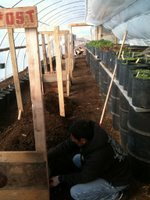 Preparing Beds for Early Spring Crops