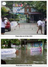 Before and After the Flood- Within the School