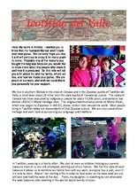 Flyer from pueblo of Teotitlán del Valle (PDF)