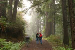 Hikers in Ecola Creek