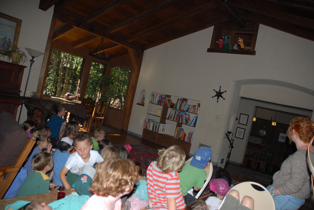 Day Camp Puppet Show