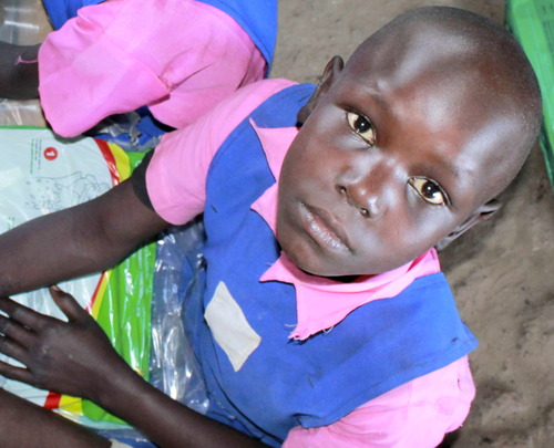 Protect 32,000 School Children from Malaria