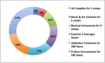 Burmese Youth Expense Chart