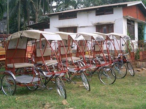 Photo-- Rickshaw line up