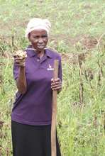 Masikhule member harvesting her potatoes for sale