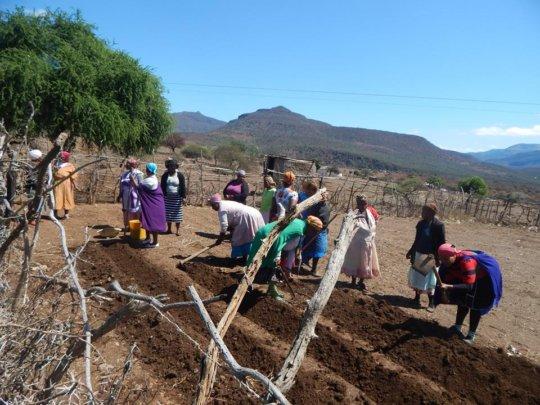 Teaching SHG members how to prevent soil erosion