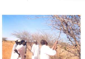 Community members participate in a field training.