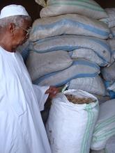 Gum Arabic at the Market
