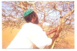 Farmers use their new skills to improve profits