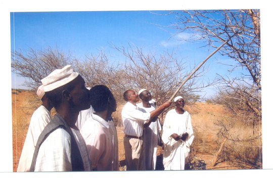 Support farmers and fight poverty in Sudan
