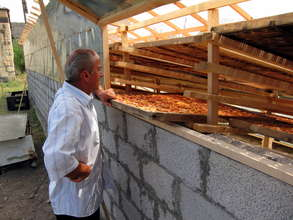Fruit drying microfranchise