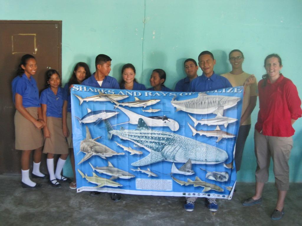 Marine biology class - sharks