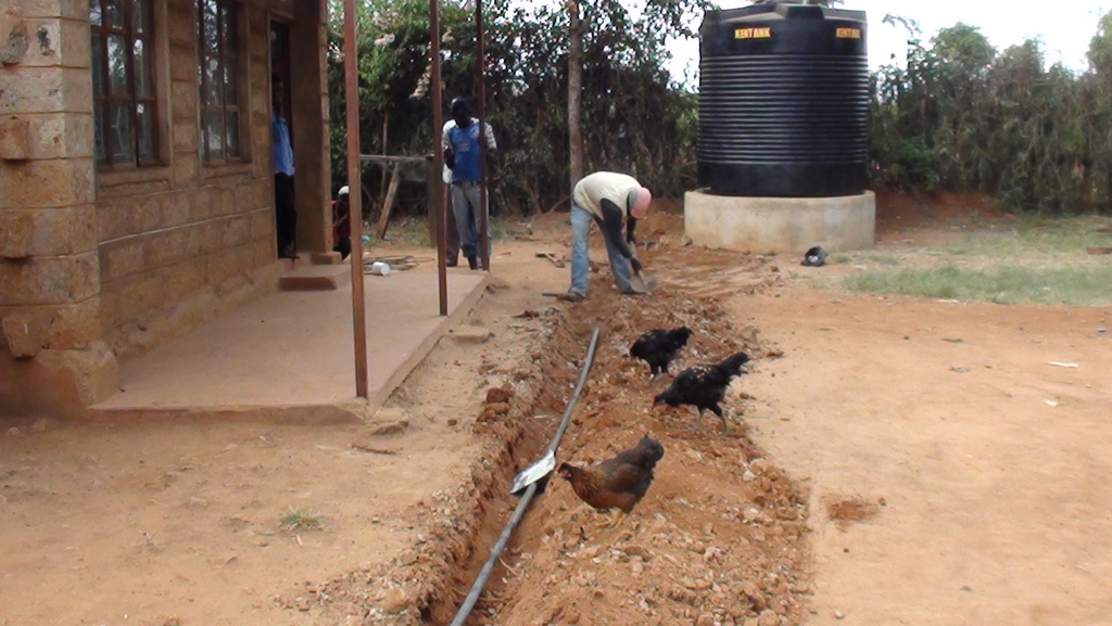 Laying Irrigation Pipes to Green House