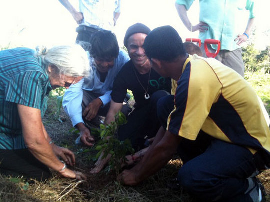 Tree planting with PIerre Andres and Alfredo