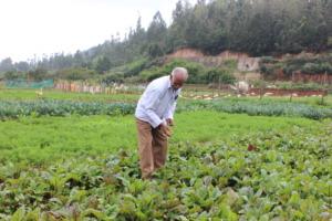 Megaraj Ayya in love with his organic farm