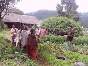 Gathering Herbs