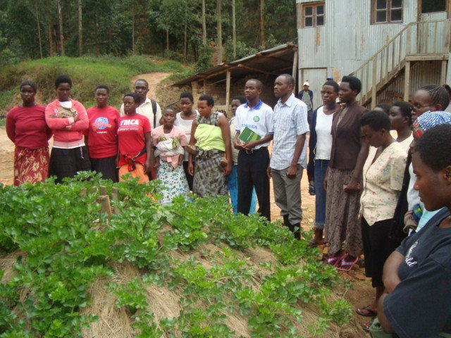 Social and Economic empowerment of 200CHH and WHHs