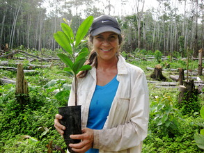 A volunteer getting ready to plant a tree