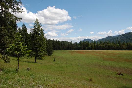Yaak Mountain Property