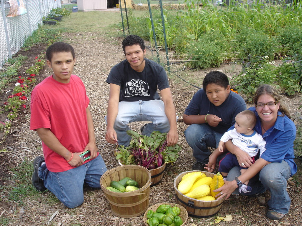 Train organic farmers in low-income communities