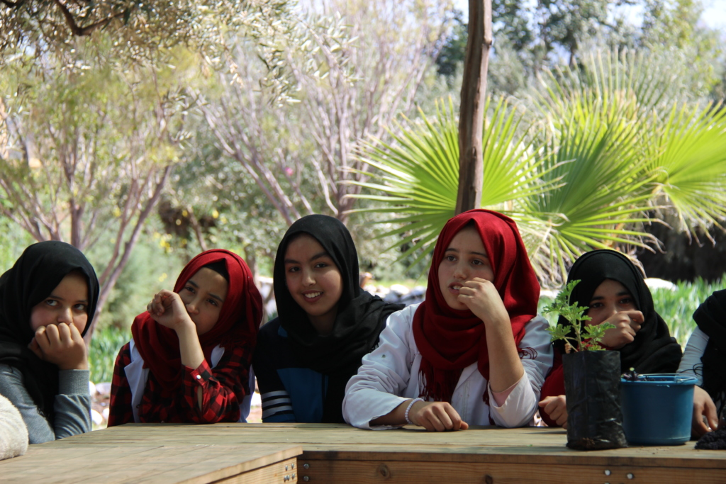 Students during a discussion on medicinal plants