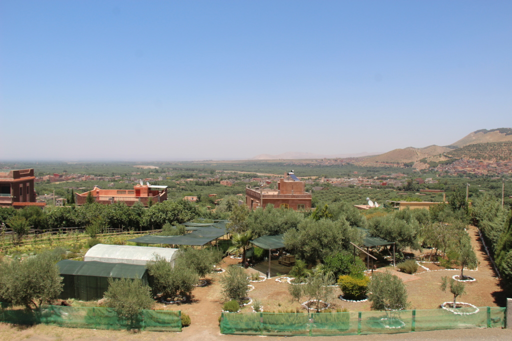 Dar Taliba garden with new greenhouse and fence