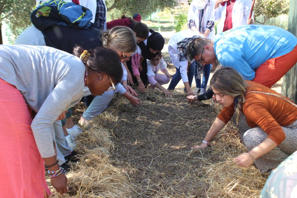 Many hands make light work (composting)