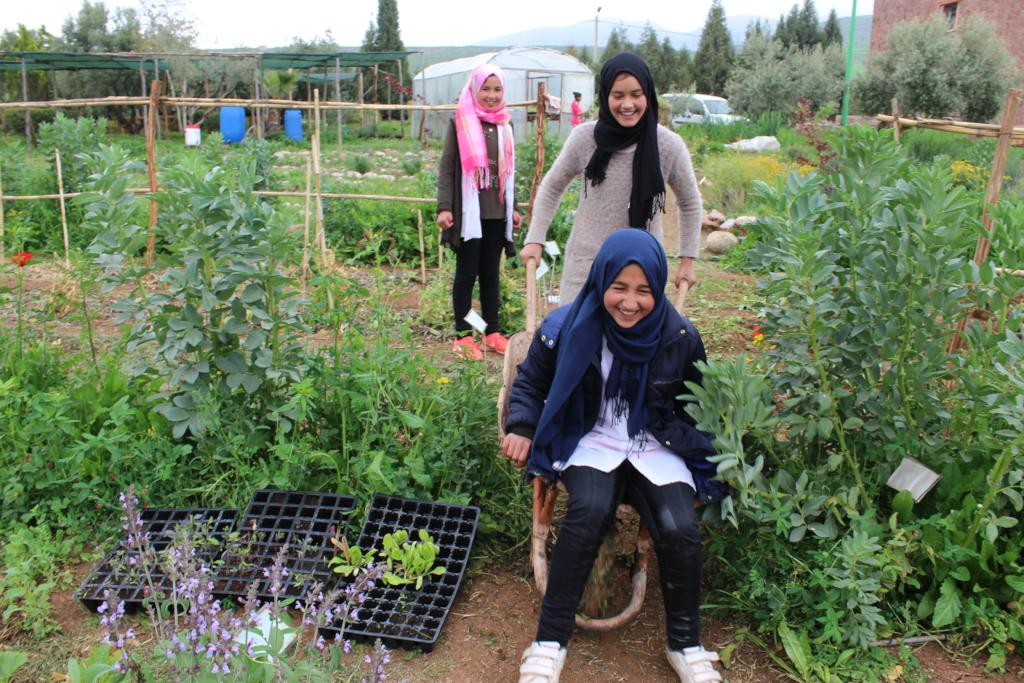 Garden fun with the wheelbarrow!