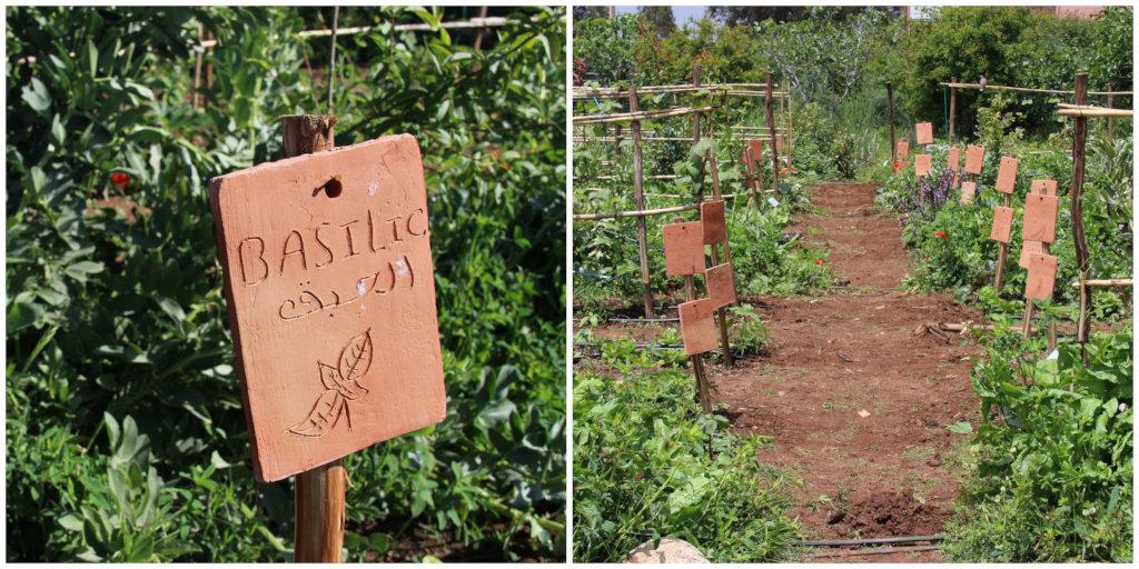 Handmade plant labels