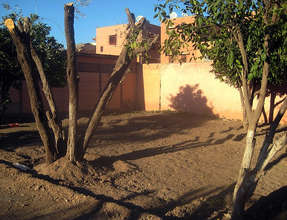 Ecole Abou Firass garden