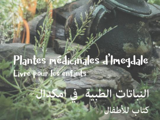 Medicinal plants of Imegdale: A book for children
