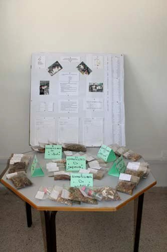 Components of traditional recipes on display