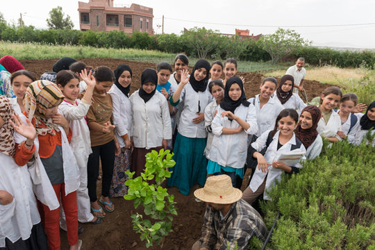 A new ethnobotanical garden is under development