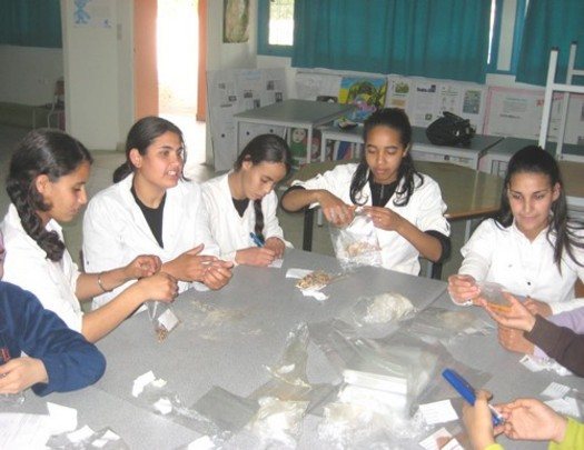 Students label specimens collected for research