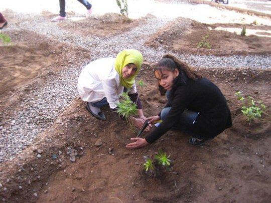 Planting their future