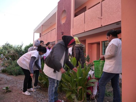 Students pruning and weeding the garden